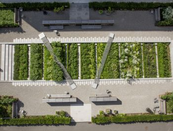 "Novartis Physic Garden | Thorbjörn Andersson + Sweco <span style=""color: #ff9900;"">[MI]</span>"