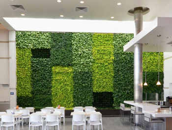 Green Wall | GSKY Plant System