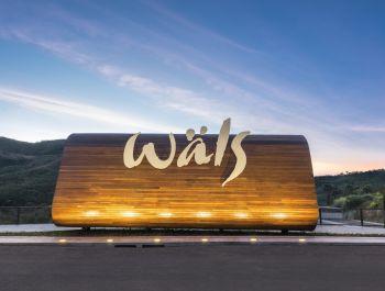 Ateliê Wäls | Gustavo Penna