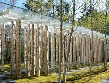 Birch Moss Chapel | Kengo Kuma