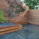 minimalist-modern-garden-design-ideas-suitable-plants-for-minimalist-garden-style-that-looks-beautiful