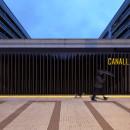 CANALLA_DISCO-01