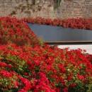 05_Marburg-Ehemalige-Synagoge_Garten-des-Gedenkens-Nutzel