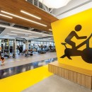 thumbs_44660-Gensler-Symantec-Mountain-View-Fitness-Center-Decal-Detail-1115.jpg.770x0_q95