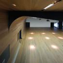 IDOMHeadquarters-ACXTArquitectos-Bilbao-Spain-2012-Parklex-HyTek-Eucalyptus-03