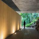 jungle-house-mk27-brazil-rainforest-fernando-guerra-extra_dezeen_1568_2