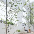 House N : Sou Fujimoto8