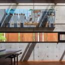 mask-house-hastings-architecture-associates-architecture_dezeen_2364_col_5