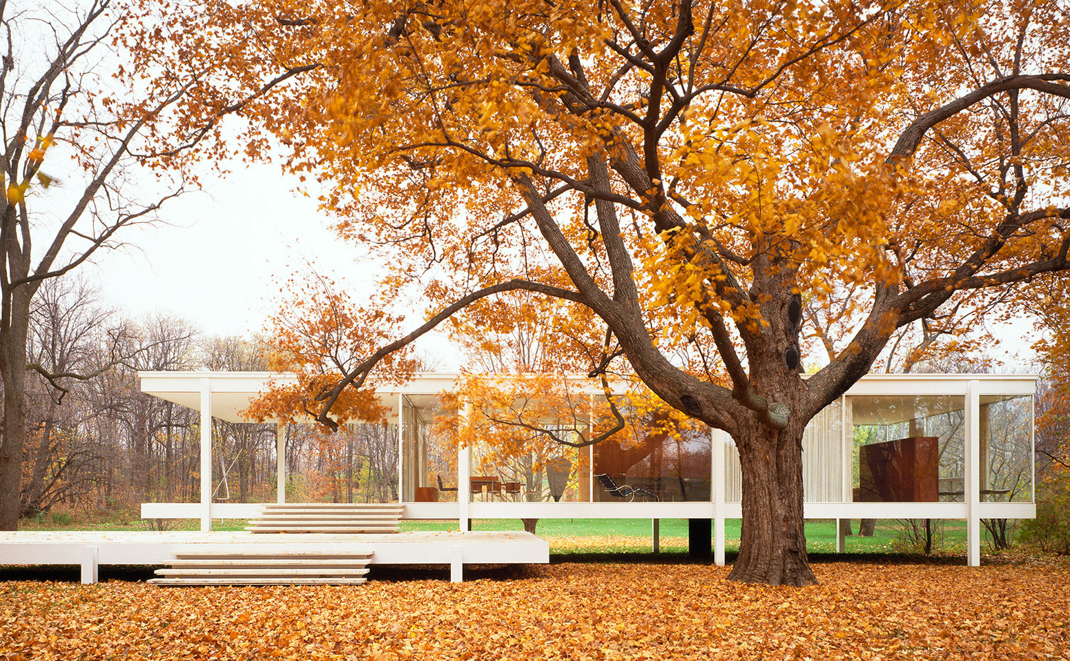 farnsworth-house-mies-van-der-rohe_dezeen_hero-1