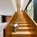 cumbres-house-arquitectura-sergio-portill_dezeen_2364_col_10