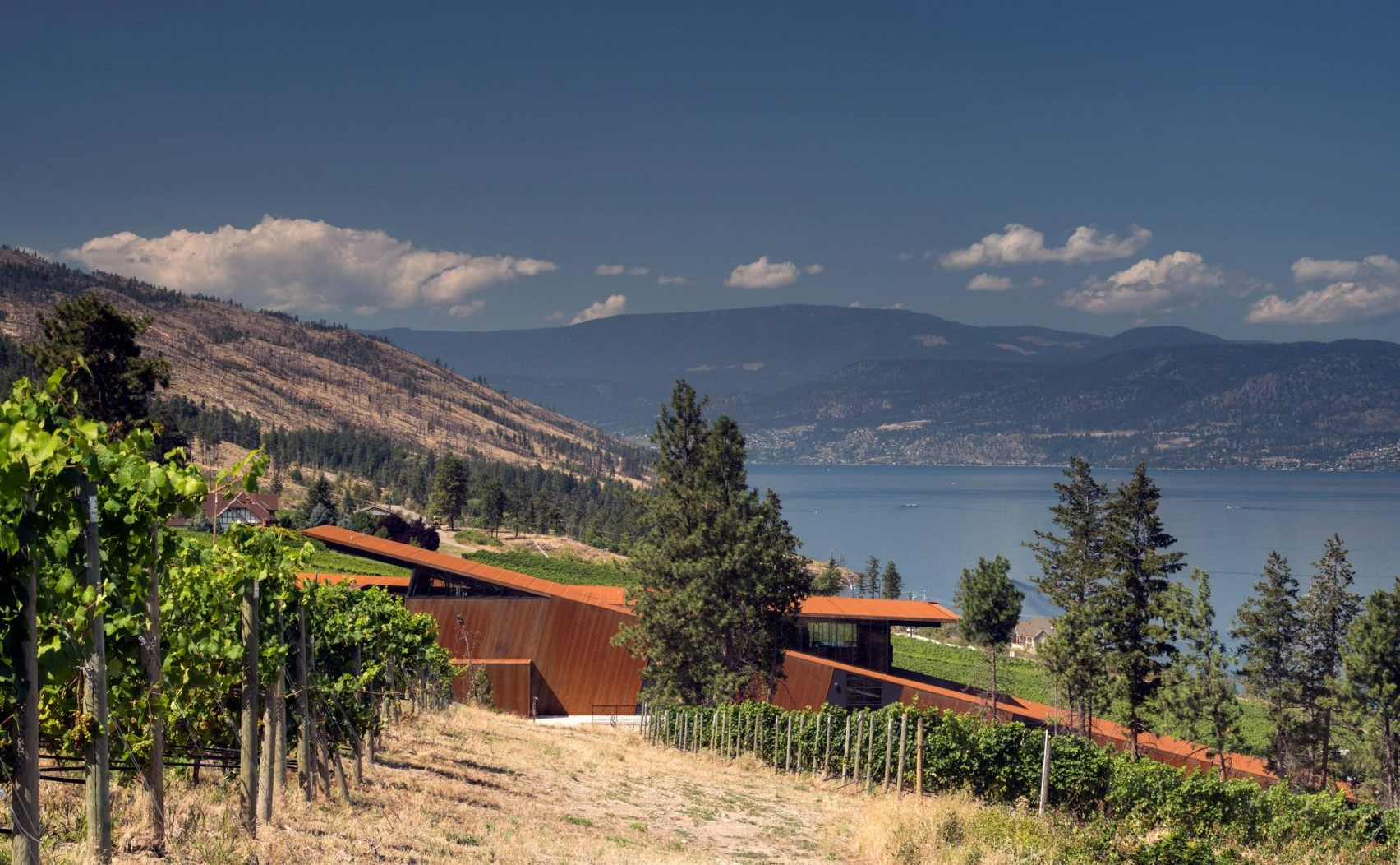 martins-lane-winery-olson-kundig_dezeen_2364_col_2-1704x1137