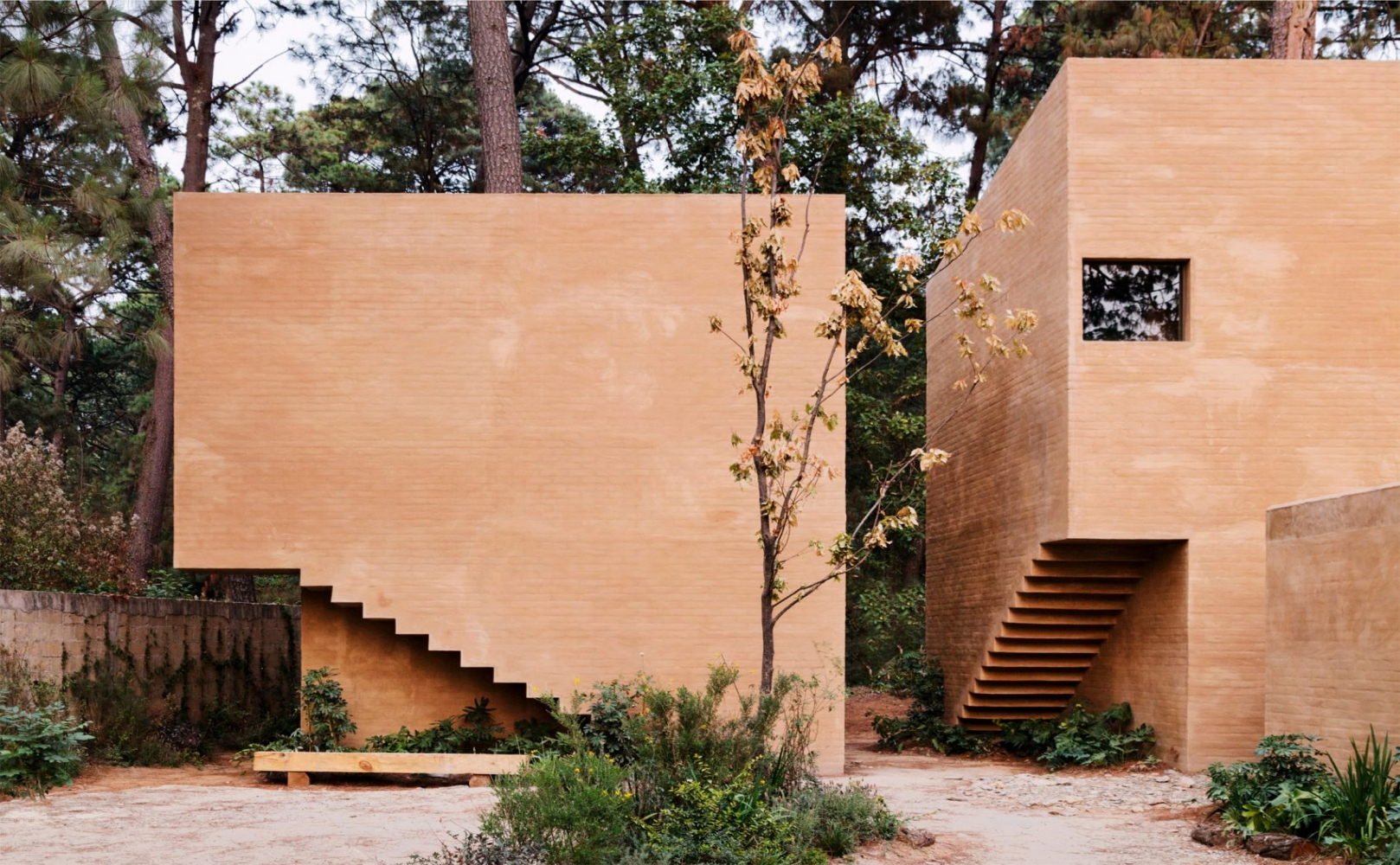 Mexican Pink Wall House | Taller Hector Barroso