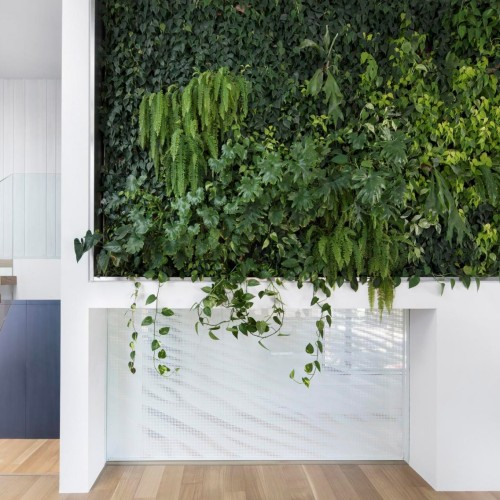 residence-courcelette-naturehumaine-montreal-canada-plants-renovation_dezeen_2364_col_0-1704x1136