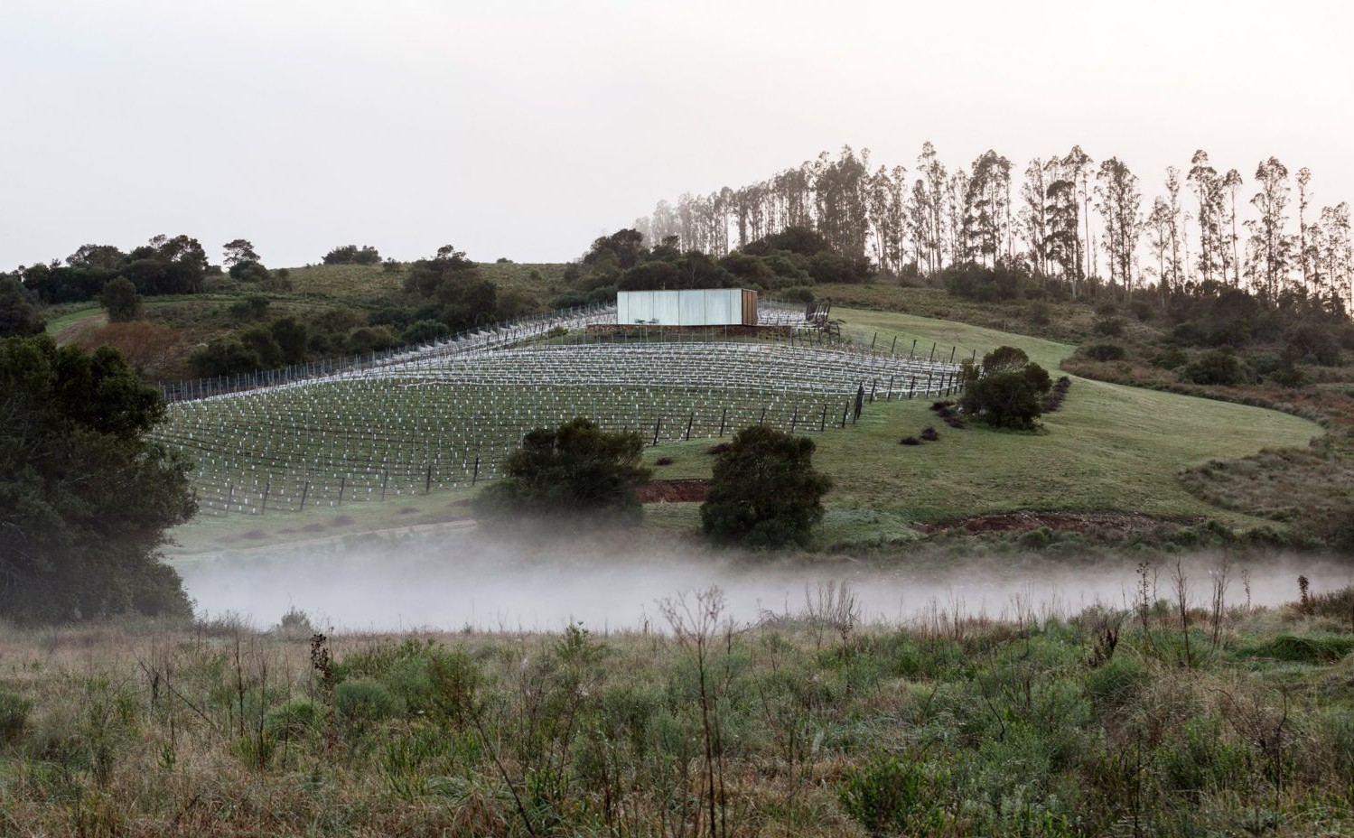 sacromonte-landscape-shelters-mapa-architecture-hotels-uruguay-prefabricated_dezeen_2364_col_12-1704x1128