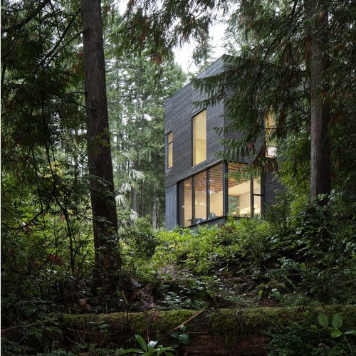 little-house-mw-works-architecture-washington-usa_dezeen_2364_col_4-1704x2046
