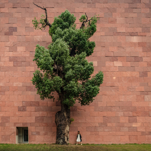 international-design-museum-china-alvaro-siza-carlos-castanheira_dezeen_2364_col_0