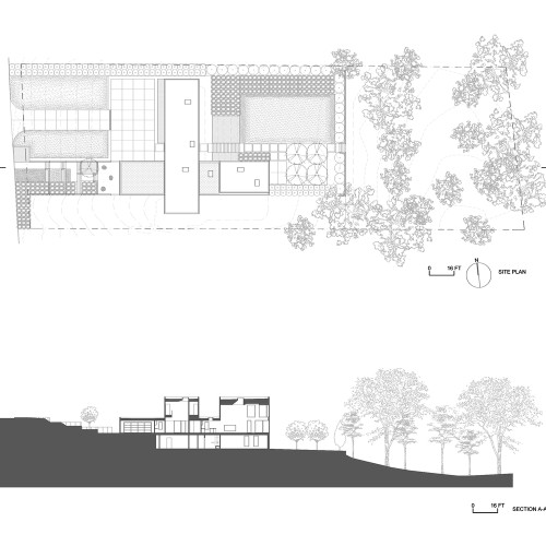 Split_Box_House_Site_Plan_and_Section
